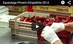 vidéo equeutage piment d'espelette