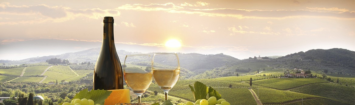 Basques Wines
